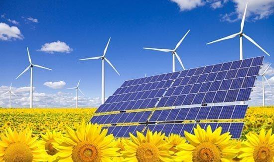 2015-12-28-1451341164-4847097-solarpanelswindturbinesflowersdaisiesSourcecleantechfinance.netccr302.jpg