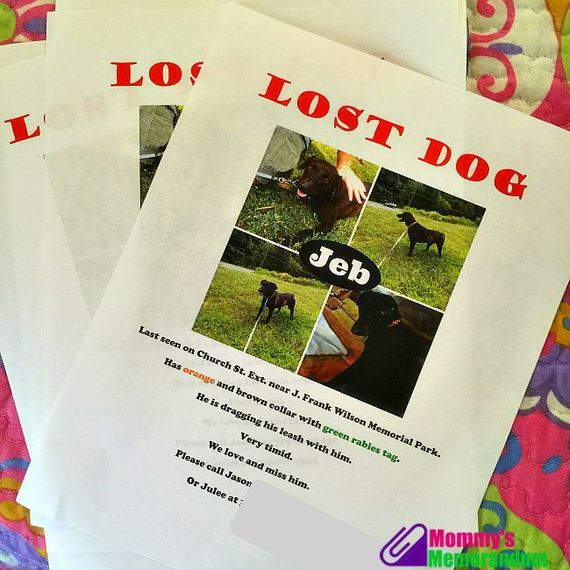 Lost Dog Flyers to help find our missing rescue dog