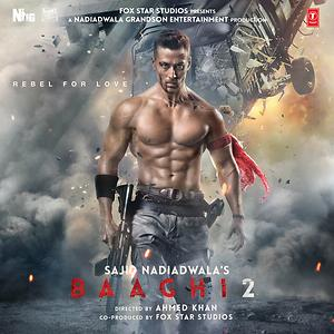 Baaghi 2 Cover