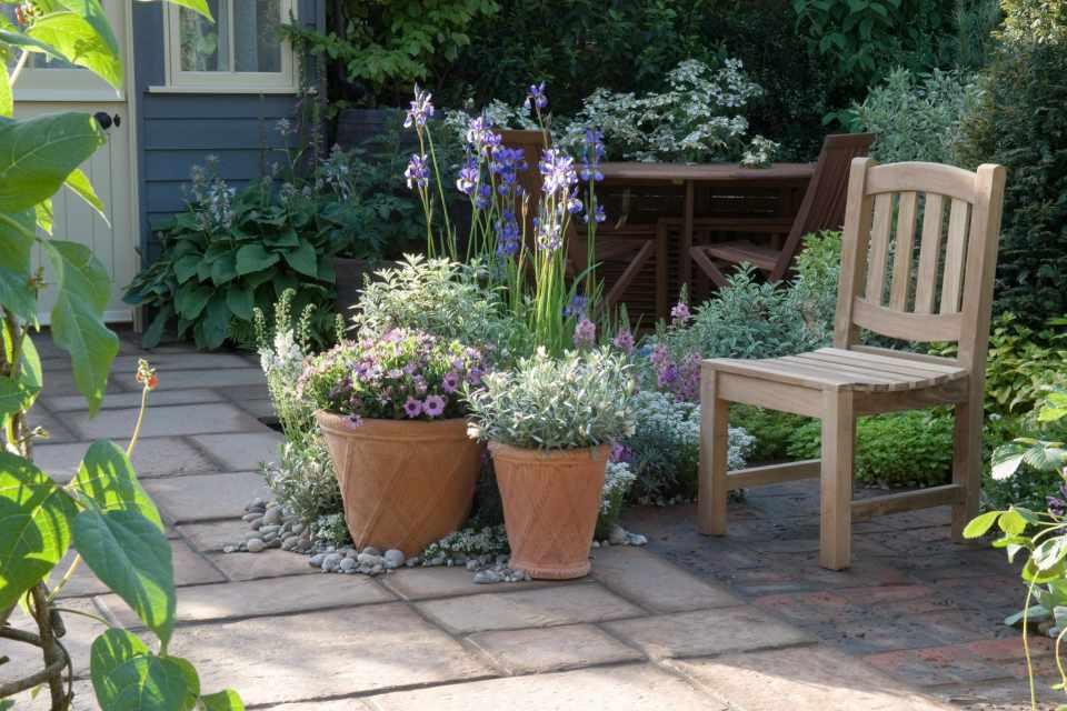 Ideas for Shady Courtyard Gardens - BBC Gardeners' World ... on Shady Yard Ideas  id=67855