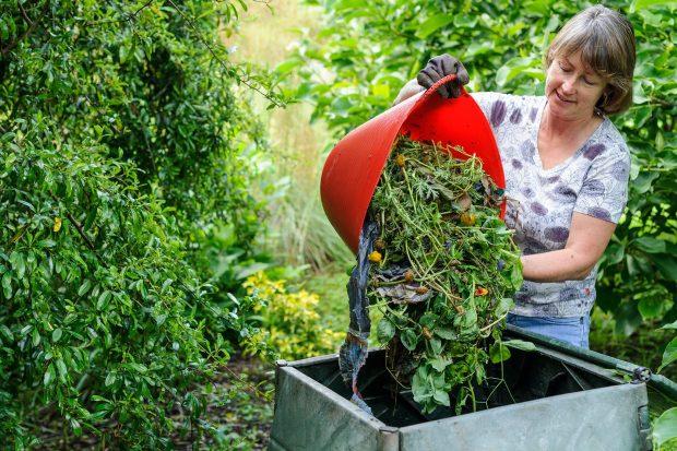 beginner gardening tips - make use of compost