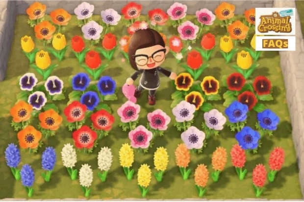 Different Flowers In Animal Crossing / Flower List All ...