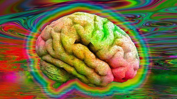 साइकेडेलिक मस्तिष्क © गेट्टी