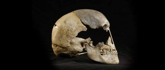 The 45,000-year-old female skull offers 'the oldest modern human genome'