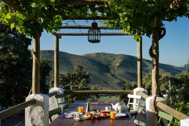 A wooden table is laid with juices and fruit. It is outside, and the table looks over rolling hills with a bright blue sky in the image