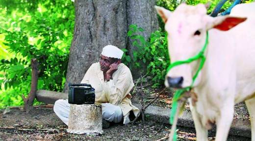 October 2014. A farmer in Sangli listens to Modi on radio.(Express Photo by: Prashant Nadkar)