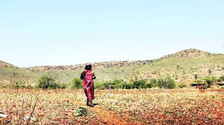 Govt agency flags off water scarcity alert for Maharashtra