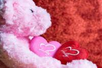 teddy day chocolate day