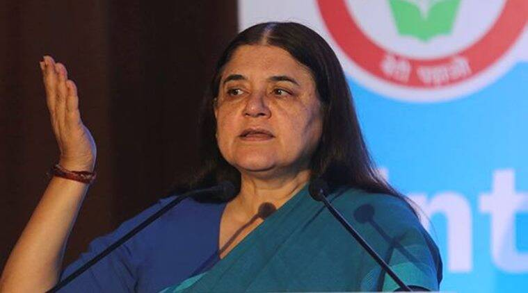 Maneka Gandhi, MeToo movement, MeToo campaign, MJ Akbar, sexual harassment, sexual harassment against women, women exploitation, indian express