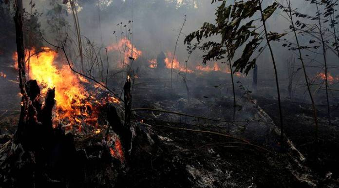 European Space Agency records Amazon air pollution in backdrop of forest fires