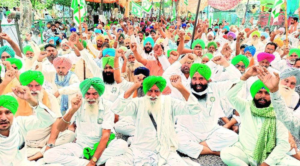 Punjab farmers protest, farm laws, farmers garner support from New Zealand, hathras incident, Chndigarh news, Punjab news, Indian express news