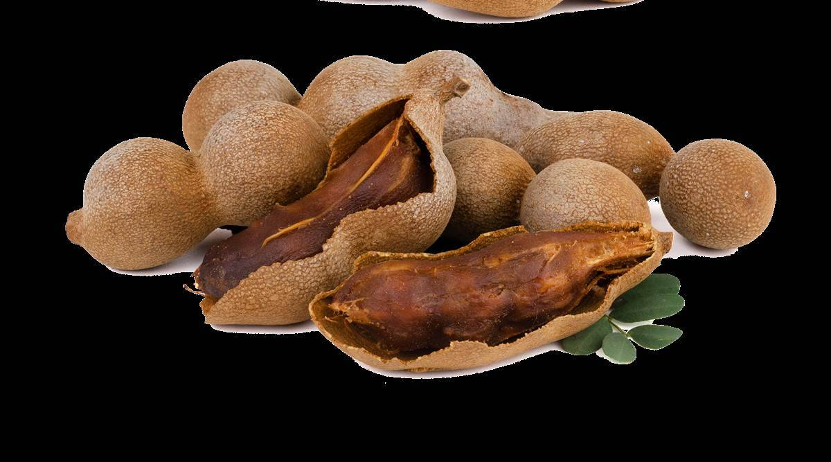 Here's why you will have to drink tamarind or imli juice