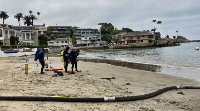Divers get ready to enter the harbor to help suction and filter out algae in Newport Beach