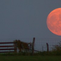 Myths and meanings of the Harvest Moon
