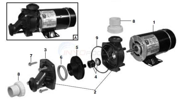 Jacuzzi J Series Parts  INYOPools