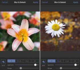 Aplikasi latar belakang blur 10