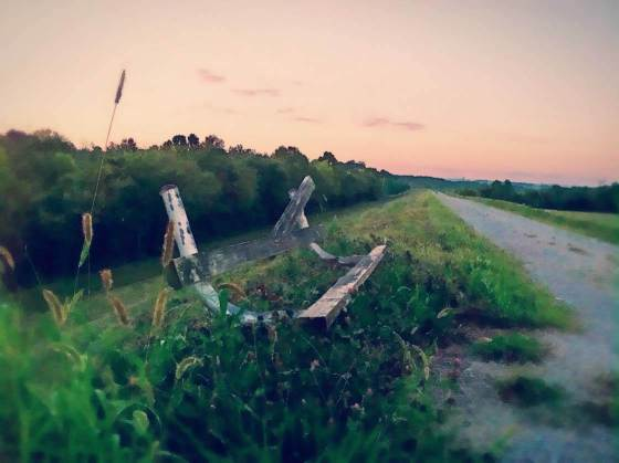iPhone Photography Good Habits 9