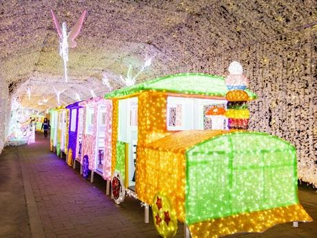 御殿場高原時之棲でイルミネーション-「妖精たちのHabataki」テーマに - 富士山経済新聞