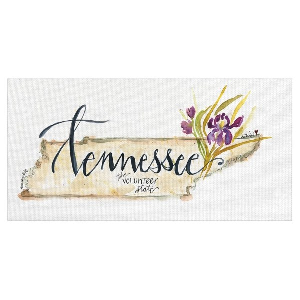 tennessee state outline canvas art print