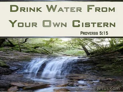 Image result for bible proverbs cistern'