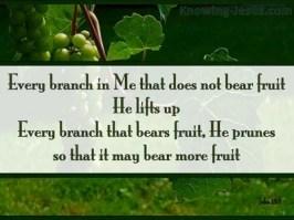 Image result for GOD PRUNES US TO BEAR MORE FRUITS