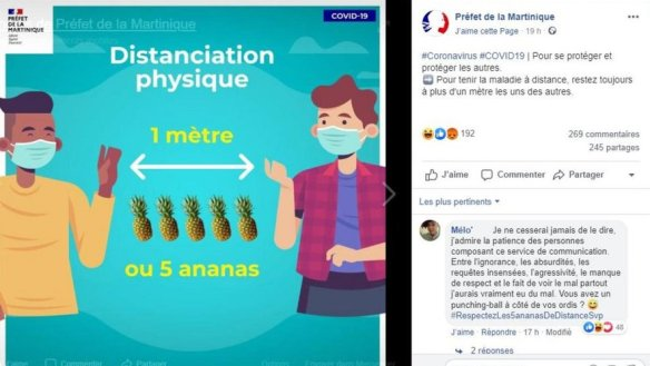 """""""1 mètre ou cinq ananas"""" : une affiche sur la distanciation sociale fait polémique en Martinique"""