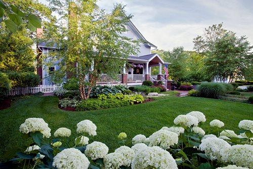 Landscape Design 60647