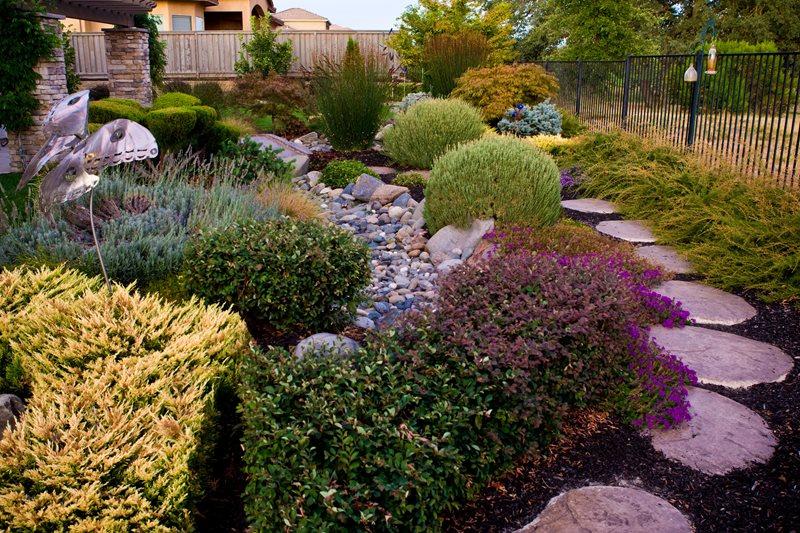 Garden Design - Rocklin, CA - Photo Gallery - Landscaping ... on Tree Planting Ideas For Backyard id=18983