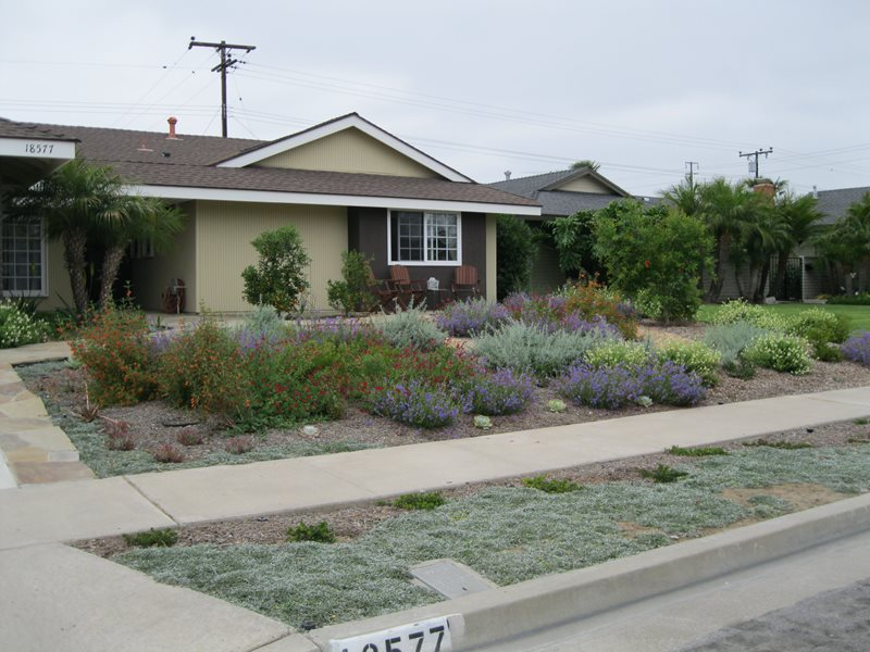 Xeriscape Landscaping - Tustin, CA - Photo Gallery ... on Xeriscape Yard Ideas  id=95155