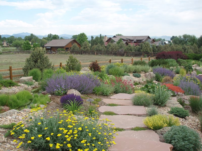 Xeriscape Landscaping - Longmont, CO - Photo Gallery ... on Xeriscape Backyard Designs  id=45971