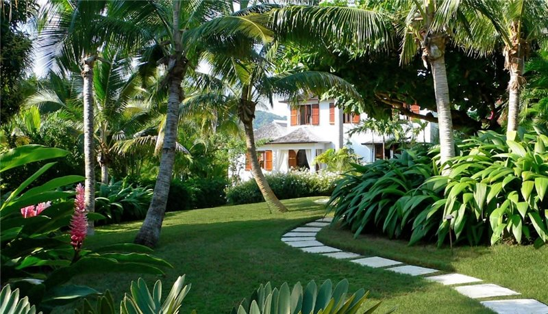 Landscape Trees - Landscaping Network on Tropical Backyard Landscaping Ideas  id=56946