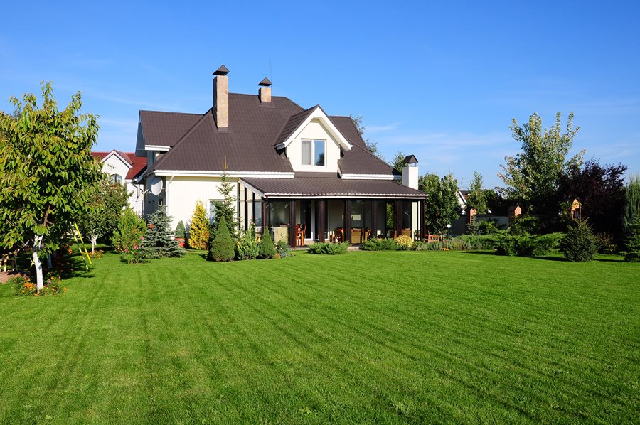 Growing Grass From Seed - Landscaping Network on Large Backyard Design id=31149