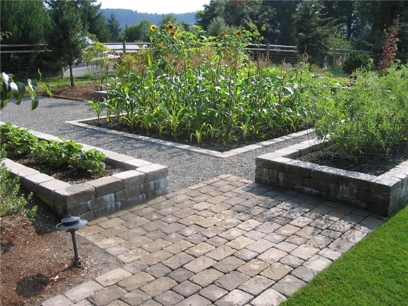 Vegetable Garden Design Ideas - Landscaping Network on Custom Backyard Designs id=81271
