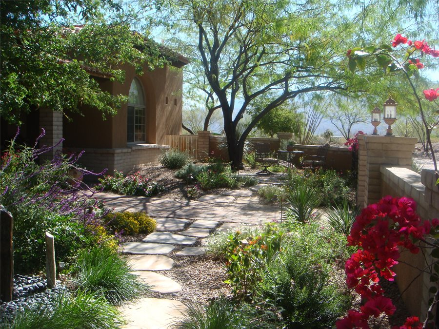 Xeriscaping Ideas - Landscaping Network on Xeriscape Backyard Designs  id=96839