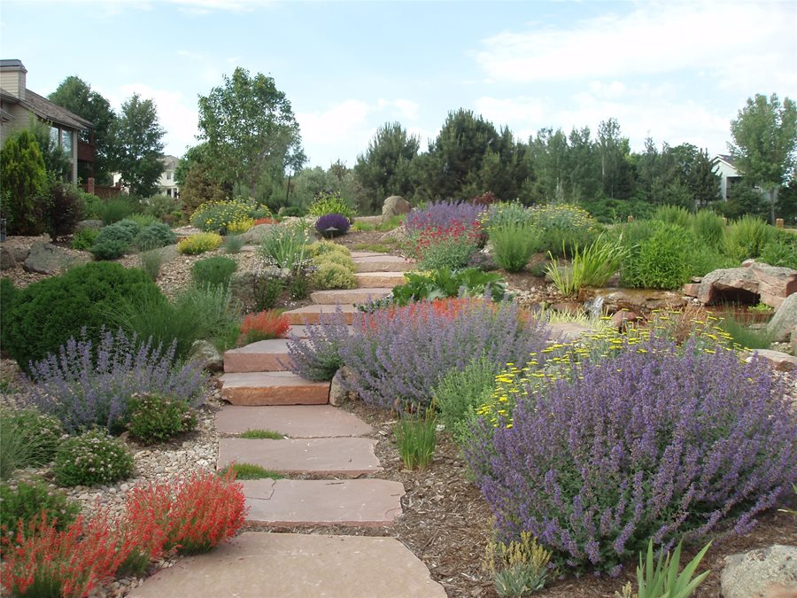 Xeriscaping Ideas - Landscaping Network on Xeriscape Yard Ideas  id=44572