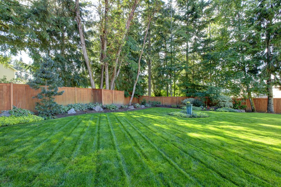 Hydroseeding a Lawn - Landscaping Network on Big Backyard Landscaping Ideas id=76524