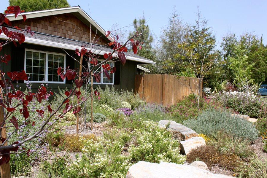 Front Maintenance Yard Free Landscaping