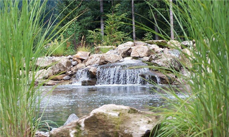Garden Pond Design Ideas - Landscaping Network on Backyard Pond Landscaping Ideas  id=51197