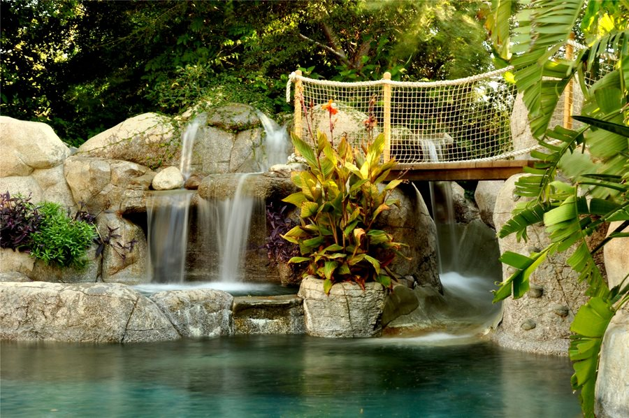 Tropical Landscaping Ideas - Landscaping Network on Tropical Backyard Landscaping  id=79162