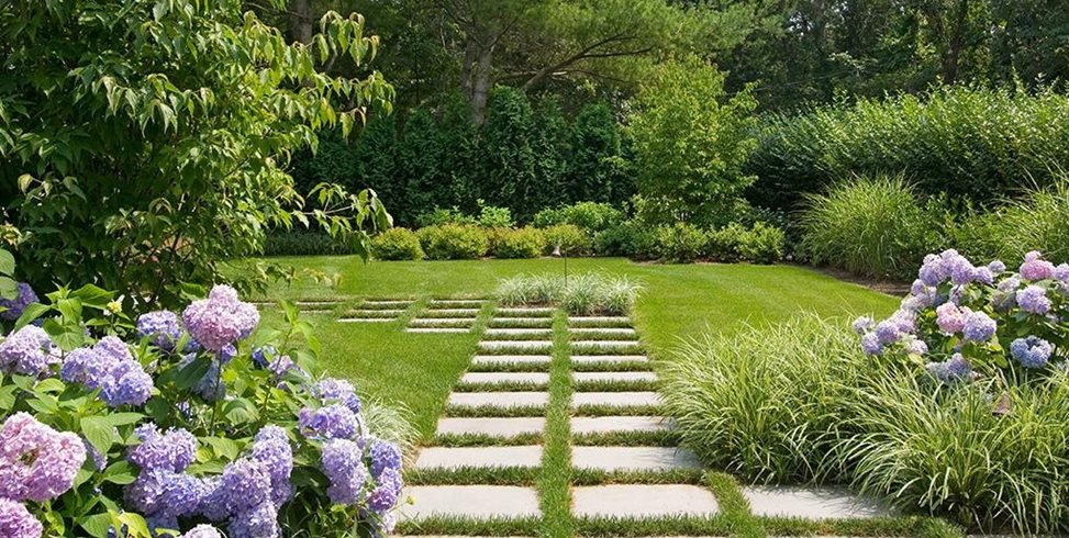 Lawn Grasses For Landscaping Landscaping Network