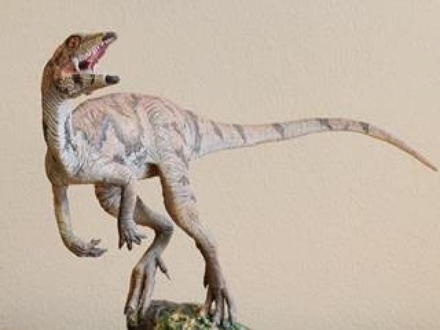 New Dinosaur in Venezuela the Size of 'Small Dog'