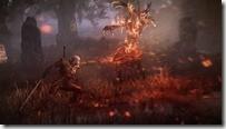 Witcher3 (5)