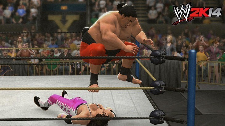 WWE (12)