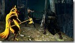 Dark Souls 2 (10)