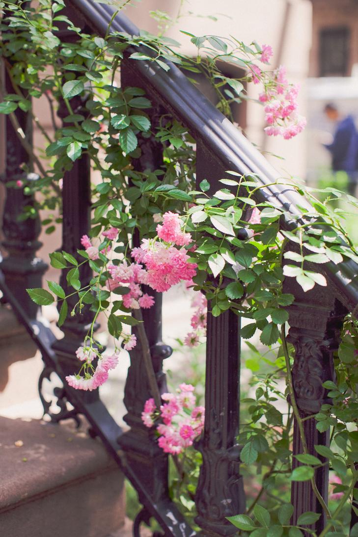 Greenwich Village (3)