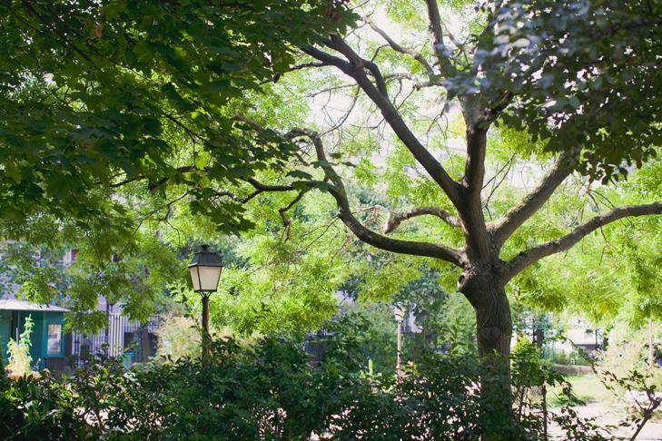 Parc parisen - www.leblogdelamechante.fr (8)