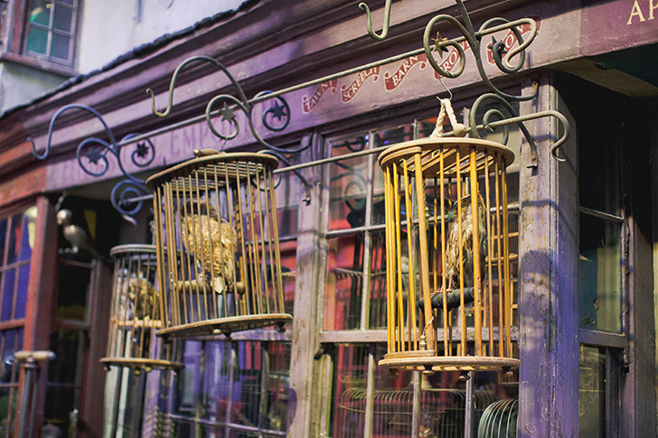 Harry Potter Studios (46)