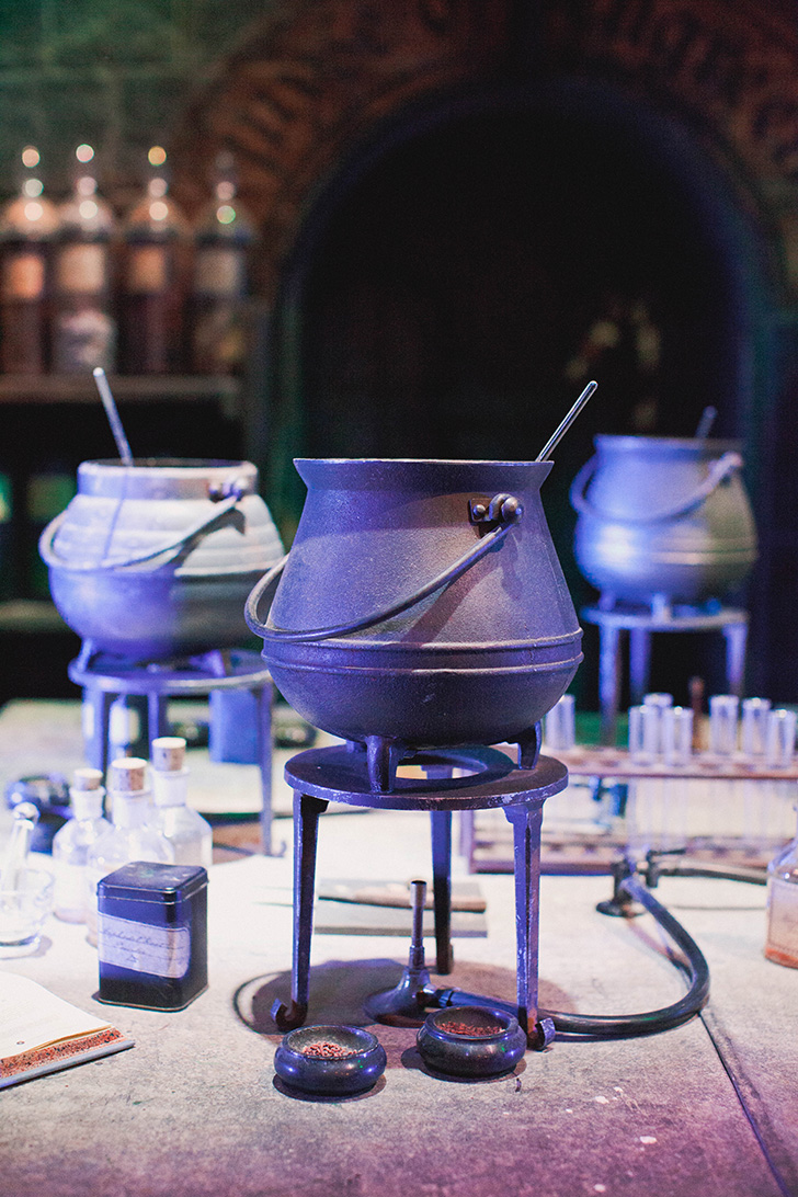 Harry Potter Studios (9)