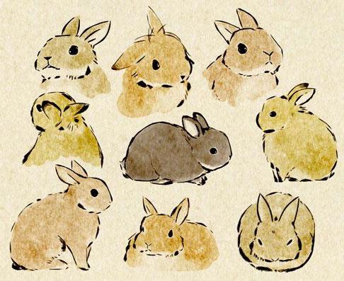 Bunnies-(10)