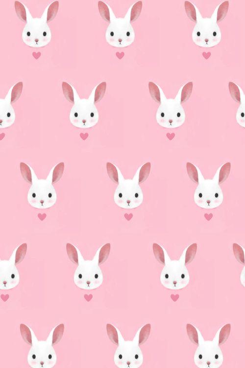 Bunnies (4)